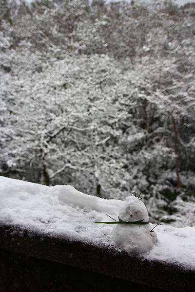 1月24日那場雪14.jpg
