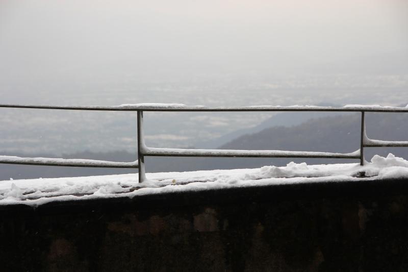 1月24日那場雪16.jpg