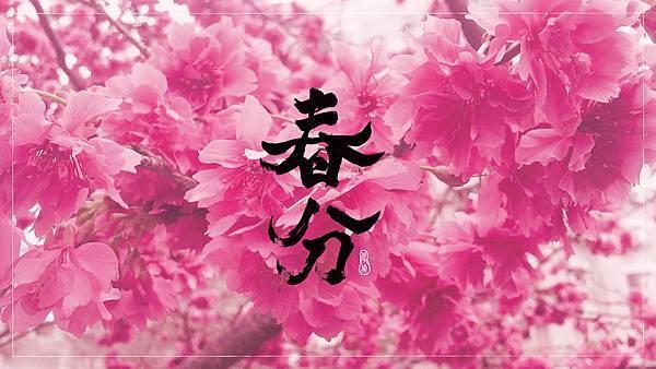 春分桌布_1980X1080
