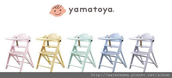餐椅顏色.JPG