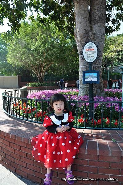 「西瓜日記香港迪士尼」的圖片搜尋結果