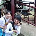 其實都很怕牛會突然打個噴嚏什麼的