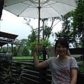 耶  我有大雨傘