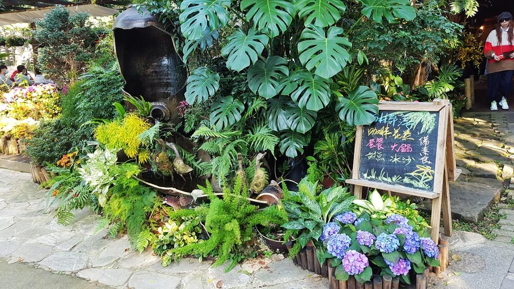 花露休閒農場_雨林部落餐廳_水月問路2.jpg