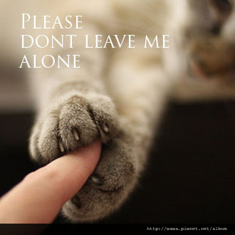 please-dont-leave-me-alone