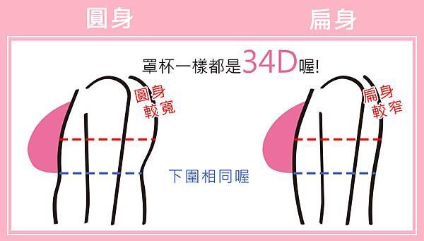 胸型2改.jpg