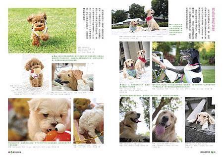 寵物攝影2_調整大小 .jpg