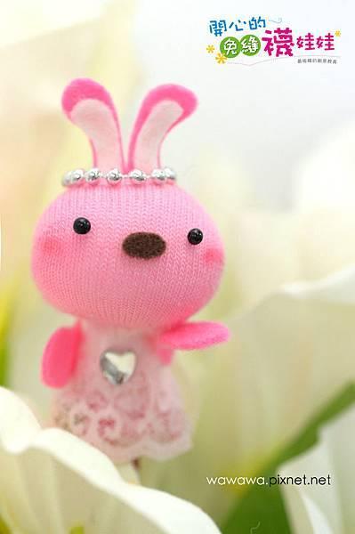 蕾絲裙小兔-1S