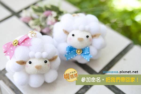 羊咩咩襪娃娃命名活動2