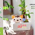 教學活動_清水模微景盆栽_好時光玩手作襪子娃娃diy材料包.png