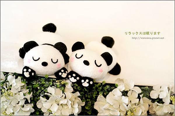 1- 熊愛睏11-Bs.jpg