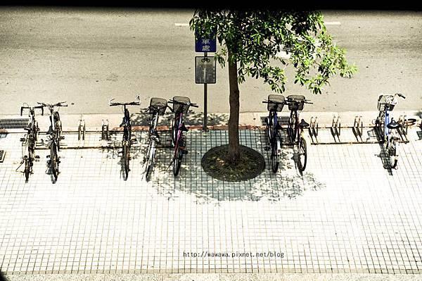 Park拷貝.jpg