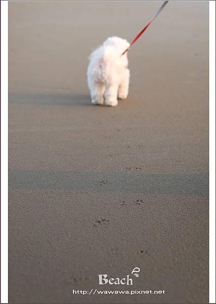 海邊4 -1拷貝.jpg