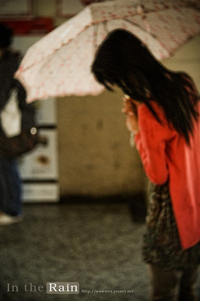 大雨2.jpg