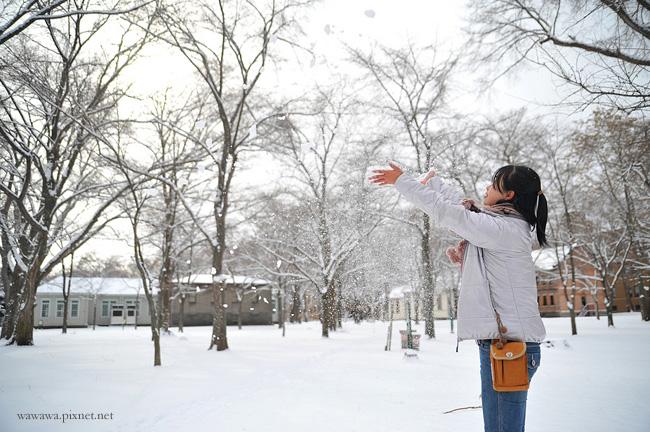 北海道.01.3s.jpg