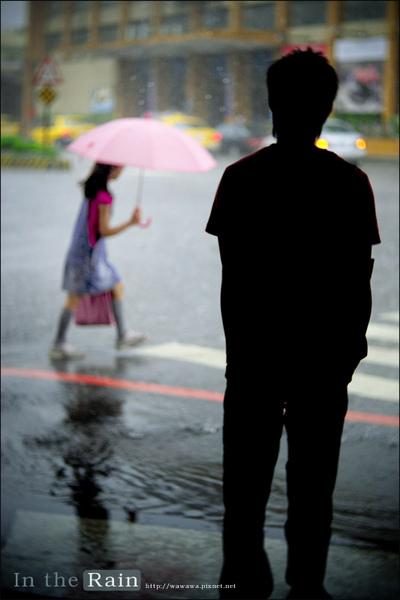 大雨3.jpg