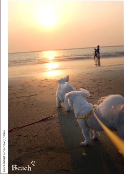 海邊3 -1拷貝.jpg