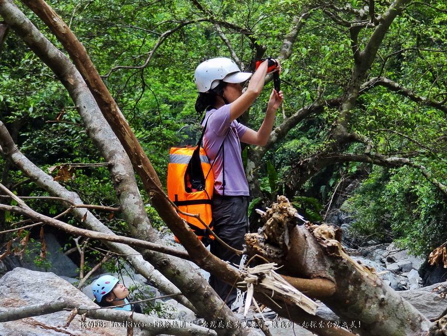 31 人物  澳花瀑布 大小菲比在做甚麼呢 尤其是菲比 景色是用看的不是用聞的