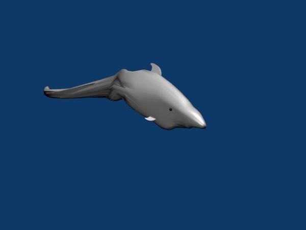 fail dolphin.jpg