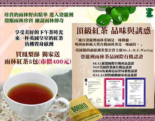 台灣伴手禮網友推薦,美食網,禮盒,鳳梨酥