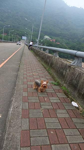 20120908內灣出遊去