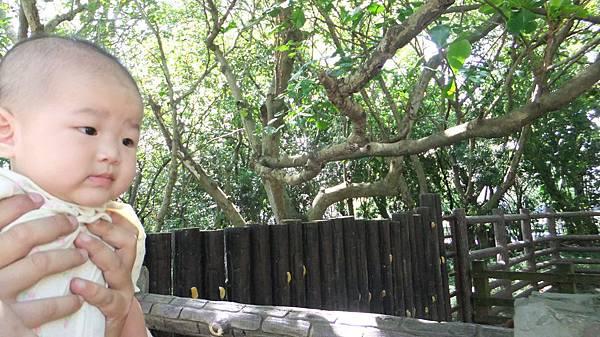 20120901木柵動物園