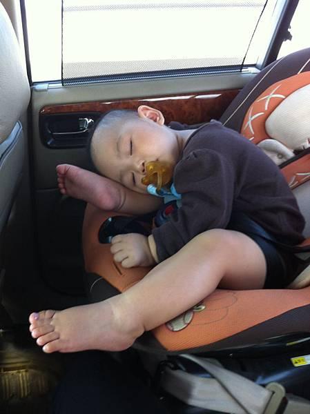 行進中在車上的睡姿.JPG