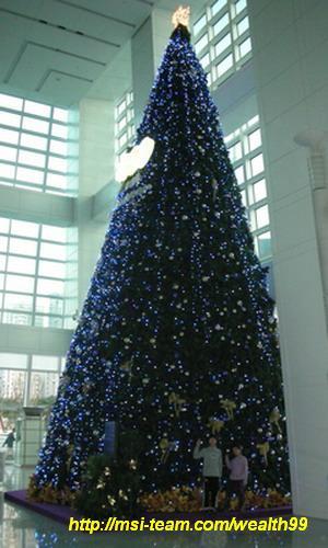 台北101大廈裡的美麗聖誕樹(優莎納USANA-MSI團隊嚴蕙娟拍攝)