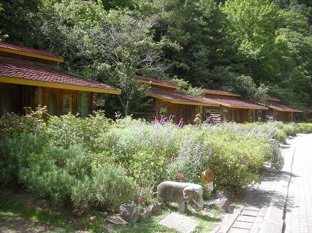 203武陵賓館的楓林木屋.jpg