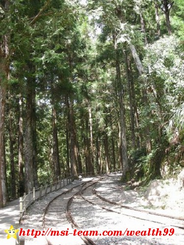 蹦蹦車終點站是茂興,由此可前往三疊瀑布和茂興國家步道
