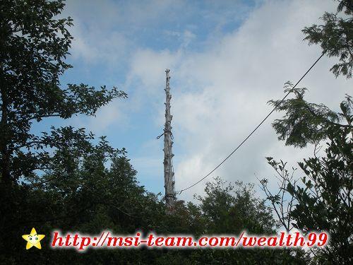 這是當年收集木材的中心柱稱為「主柱木」或是「集材柱」