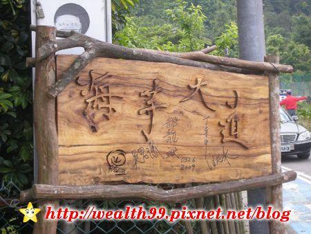 090510竹子湖海芋01(001).jpg