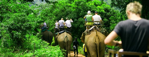 elephant-trekking-samui