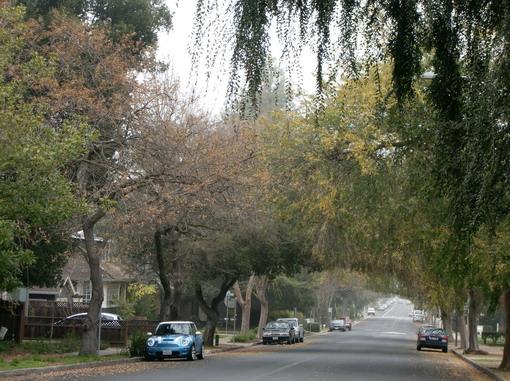 facebook位在很靜謐的Palo Alto一角