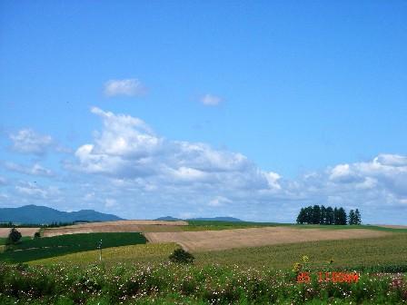 層層起伏的丘陵,好像好多條大自然地毯