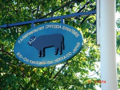 午餐吃的就是他們自己養的牛