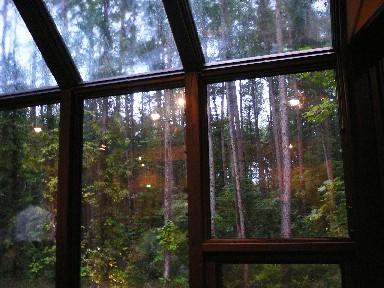 冬天時窗外一定很美,都是雪白
