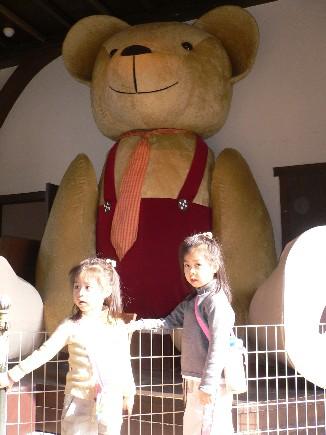 這裡有一個泰迪熊博物館,據說這是世界最大的泰迪熊