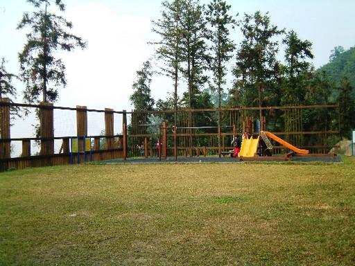 這是遊樂區,也是在森林中