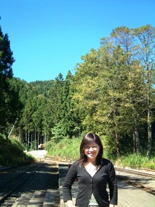 阿里山有的就是森林!