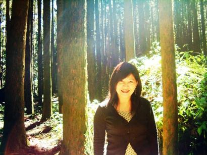 好美的林間陽光