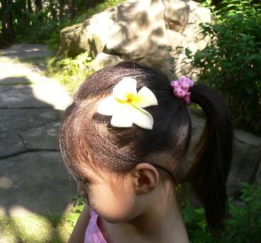 吃飽到四季花園走走,軒軒拾起一朵花別在頭上