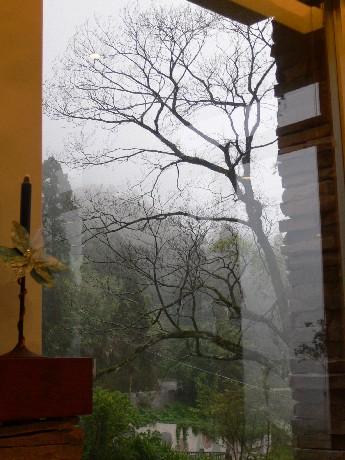 客廳外向晚的山嵐,透露沉澱的心情