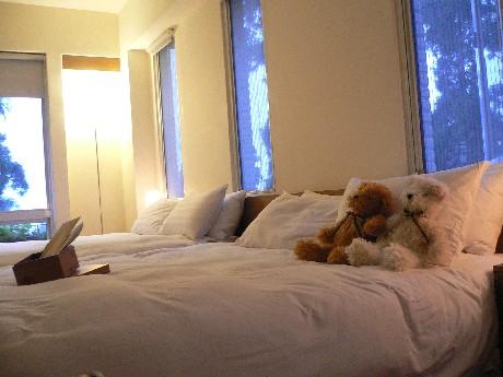 我們的房間兩邊都是窗戶,好像就睡在森林中...