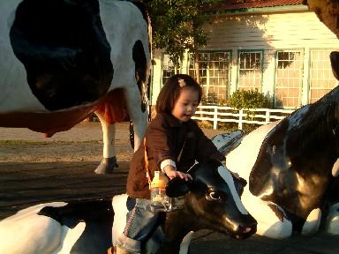 當然要騎一下鮮奶牛牛囉