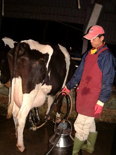 鮮奶就是醬來的...明天早上就可以喝囉