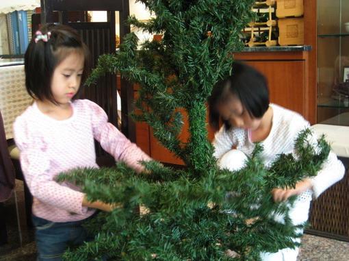 Hello,聖誕樹,終於又見面了!!