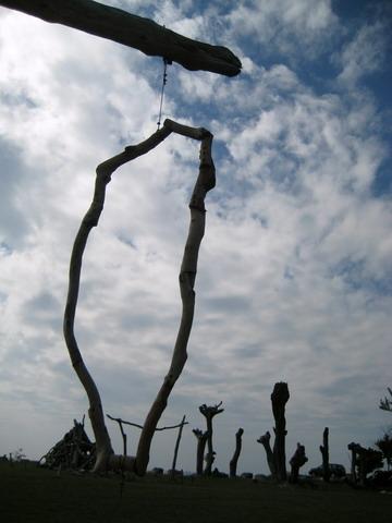 濱海公園的漂流木創作