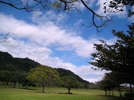公園的大草原是讓我們七年後再回鍋的誘因