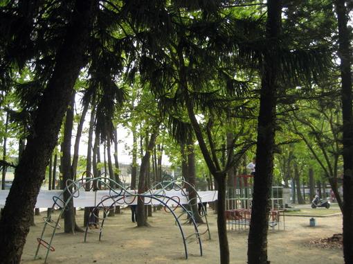 遊樂區竟然就在森林處!